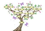 Les 73 Branches en Islam