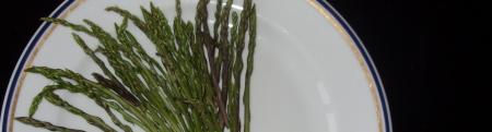 Forum frontignan cueillette asperge sauvage