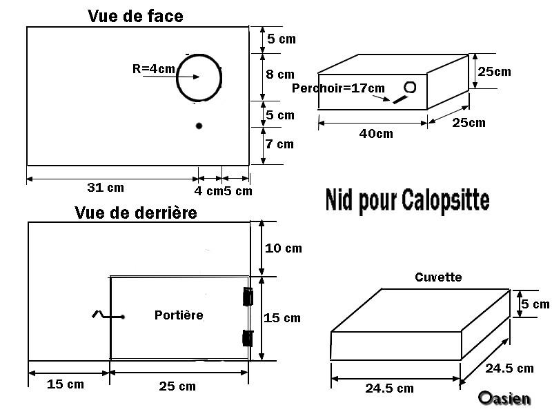 Plan d 39 un nid pour calopsitte oasien - Dessin calopsitte ...