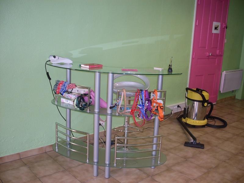 Mon salon de toilettage for Salon toilettage