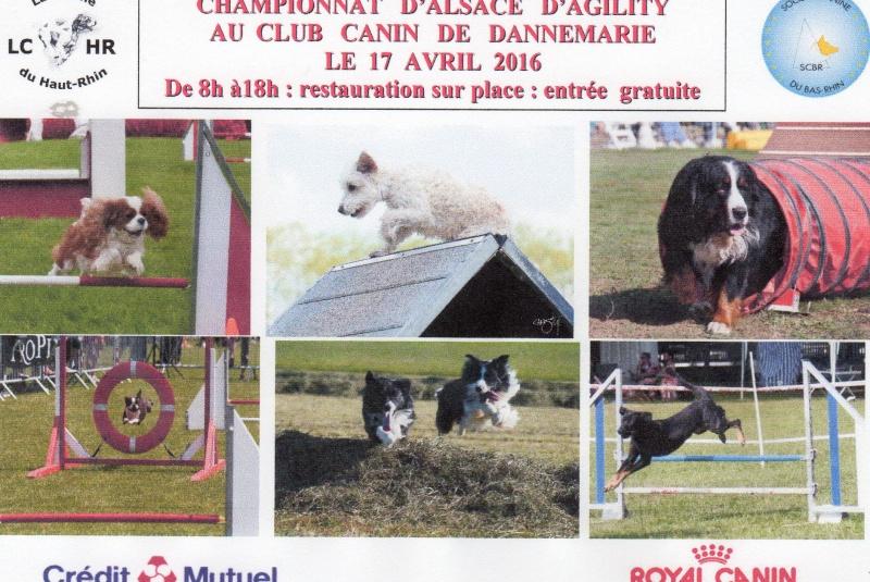 club canin dannemarie 68210