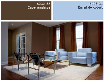 Quelle couleur murs pour salon avec canopy bleu fonc et for Association de couleur pour salon
