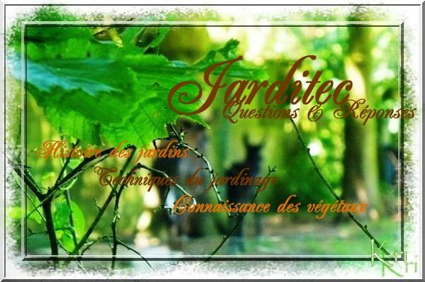 R le des espaces verts for Offre espace vert