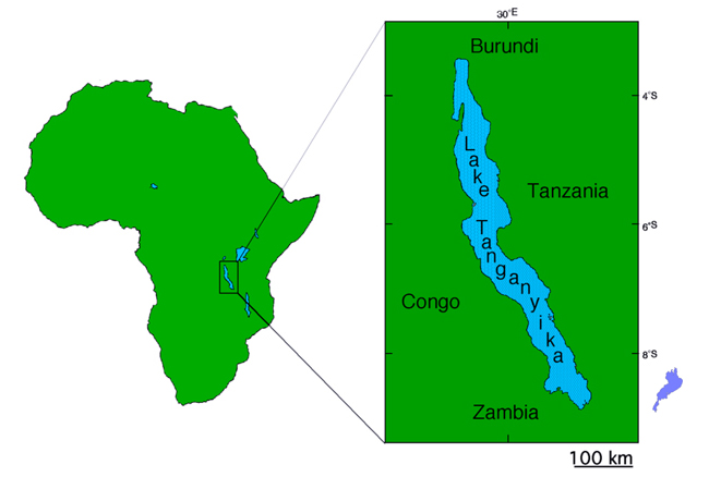 lake tanganyika is an african great lake it is estimated to be the
