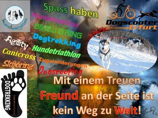 http://www.dogtrekking-erfurt.de/