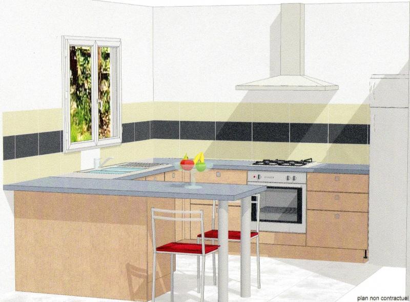 cuisine en u ouverte sur salon choix couleurs peinture - Cuisine En U Plan