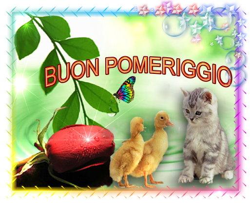Buongiorno forum saluti lampo pagina 27 for Immagini buon pomeriggio due chiacchiere