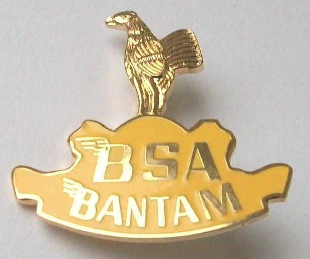 bsa_ba13.jpg