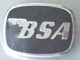 bsa_co12.jpg