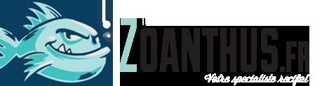 photo logo zoanthus
