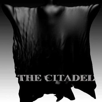 فيلم The Citadel 2015 مترجم دي فى دي