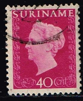 19396.jpg