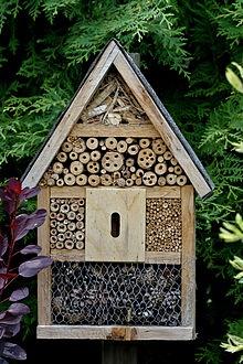 comment fabriquer des hotels pour insectes et amis du. Black Bedroom Furniture Sets. Home Design Ideas
