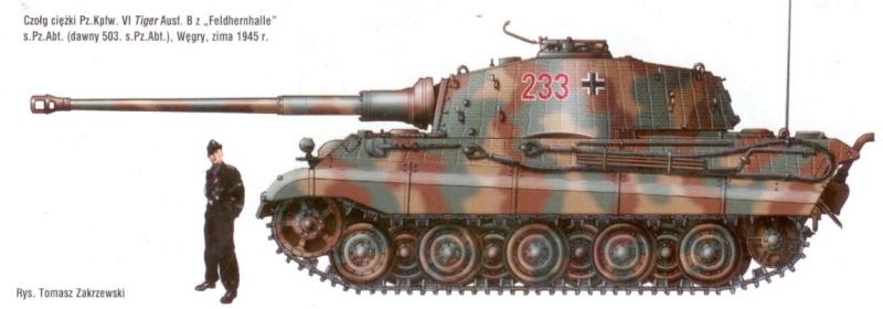 http://i84.servimg.com/u/f84/19/33/23/03/tigre_10.jpg