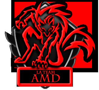 La team AMD
