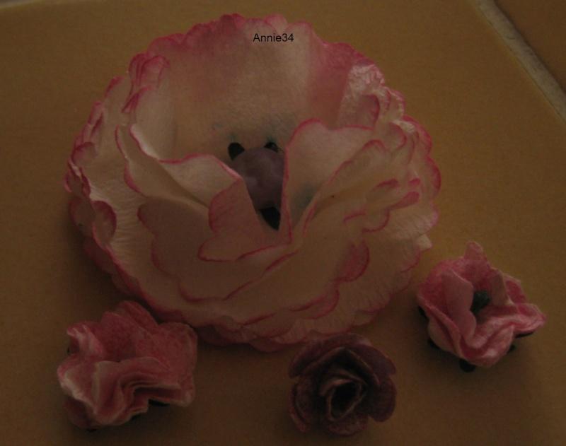 Les fleurs j 39 adore page 3 - Gifi la ciotat ...