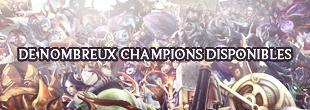 De Nombreux Champions Disponibles