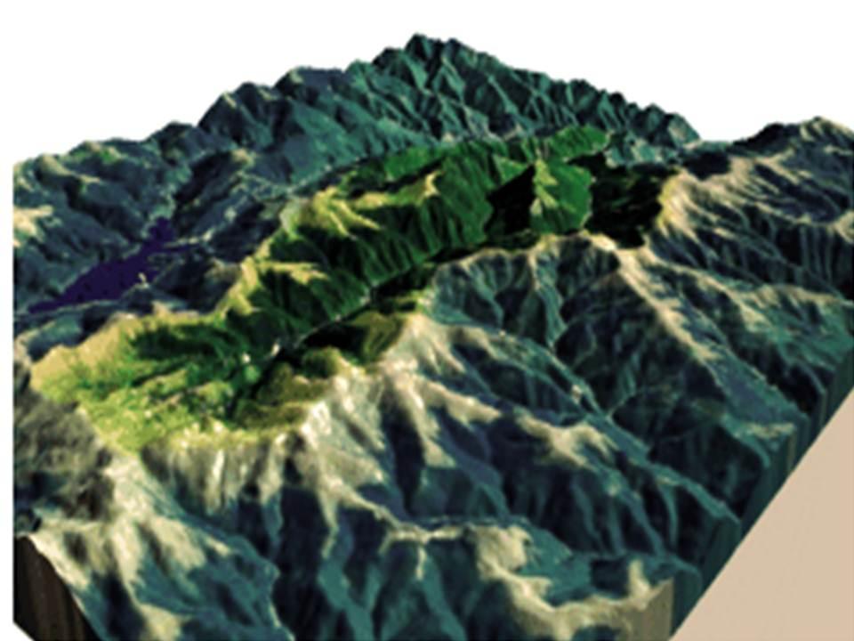 Problemática que amenaza la cobertura vegetal de las Cuencas Hidrográf