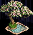 * Le cerisier en fleurs (Niv10)