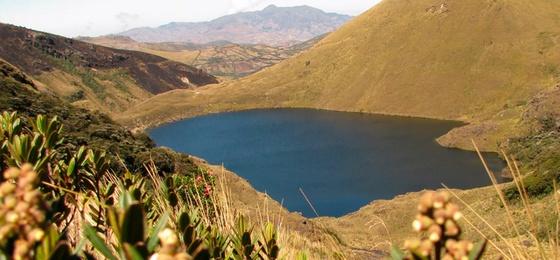 Laguna Shimbe