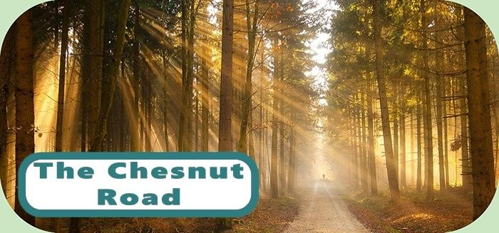 The Chestnut Road